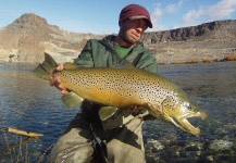 Rodrigo Amadeo 's Fly-fishing Image of a Brown trout – Fly dreamers