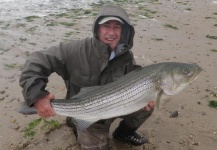 Jack Denny 's Fly-fishing Pic of a Striper – Fly dreamers