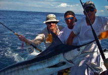 Fly-fishing Image of Marlin shared by John Kelly – Fly dreamers