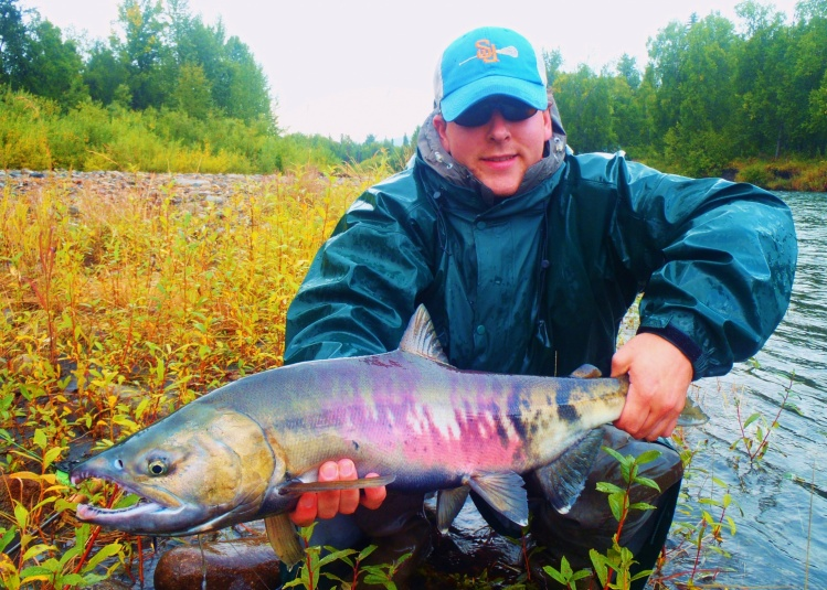 how to catch chum salmon in saltwater