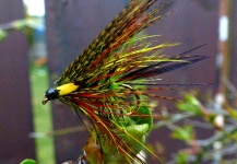 The Bloody Olive Dabbler