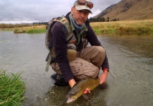 Brendan Shields 's Fly-fishing Image of a Brown trout – Fly dreamers