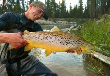 Brown Trout On the Fly by Mountain Made Media - Fly dreamers