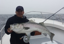 Fly-fishing Image of Striper shared by Chanan Chansrisuriyawong – Fly dreamers