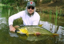 Rafael Costa 's Fly-fishing Picture of a Salminus franciscanus – Fly dreamers