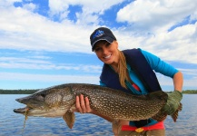 Pike Fly Fishing - C&R photo by Rebekka Redd - Fly dreamers