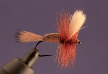 Fly-tying for Golden Trout - Picture shared by Marcelo Morales – Fly dreamers