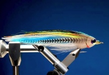 Marcelo Morales 's Fly-tying for Piranha - Photo – Fly dreamers