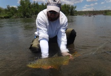 Tiger of the River Fly-fishing Situation – Big Horse shared this Cool Image in Fly dreamers