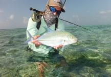 Fergus Kelley 's Fly-fishing Picture of a Bluefin trevally – Fly dreamers