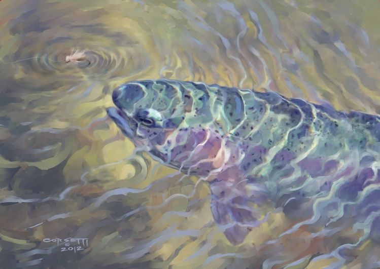 Fly fishing art for rainbow trout picture shared by for Rising fly fishing