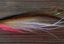 Jack Denny 's Fly for Striped Bass - Image – Fly dreamers