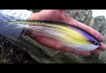Jason Taylor 's Fly-tying for Striper - Photo – Fly dreamers