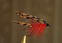 Fly-tying Image shared by Ariel Garcia Monteavaro – Fly dreamers