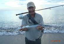 David Bullard 's Fly-fishing Pic of a Needlefish – Fly dreamers