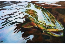 Nice Fly-fishing Art Picture shared by Rosi Oldenburg – Fly dreamers