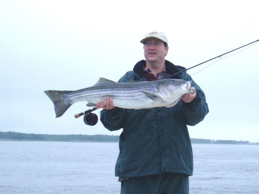 Capt dave guerard fly fishing guide fly dreamers for Captain dave s fishing