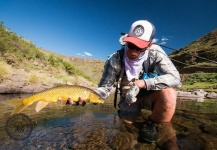 Jako Lucas 's Fly-fishing Picture of a Yellowfish – Fly dreamers