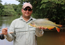 Mau Velho 's Fly-fishing Pic of a Pira Pita – Fly dreamers