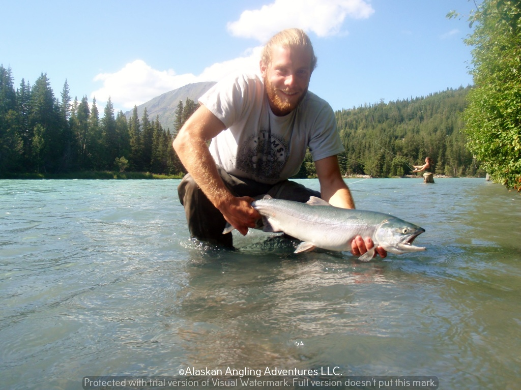 Mike adams alaskan angling adventures fly fishing guide for Fly fishing book