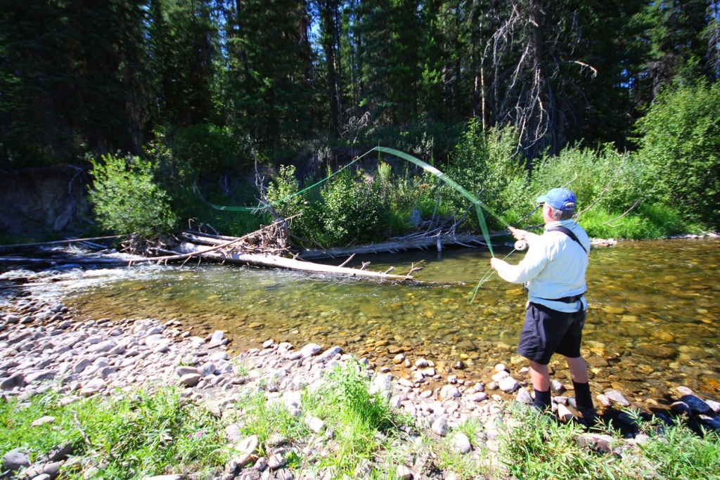 Dave brown outfitters fly fishing outfitter fly for Fly fishing british columbia