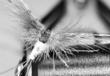 Fly-tying for Brown trout - Pic shared by Stig M. Hansen – Fly dreamers