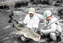 Surubi Fly-fishing Situation – Vittorio Botta shared this Great Pic in Fly dreamers