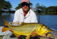 Fly-fishing Image of Golden Dorado shared by Nicolás Schwint – Fly dreamers