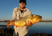 Golden Dorado Fly-fishing Situation – Lucas Berraz shared this Good Image in Fly dreamers