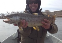 Justin Taylor 's Fly-fishing Photo of a Browns – Fly dreamers