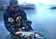Fly-fishing Photo of Dolly Varden shared by Luke Metherell – Fly dreamers
