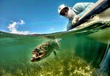 Frankie Marion 's Fly-fishing Pic of a Barracuda – Fly dreamers