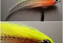 Fly-tying for Striper - Image by Jack Denny