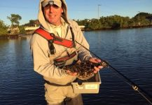 Fly-fishing Picture of Flounder shared by David Bullard – Fly dreamers
