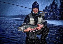 Fly-fishing Picture of Dolly Varden shared by Luke Metherell – Fly dreamers