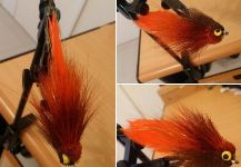 Santiago Miraglia 's Fly for Salminus brasiliensis - Pic – Fly dreamers