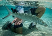 Black Fly Eyes Flyfishing 's Fly-fishing Pic of a Bonefish – Fly dreamers