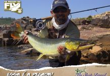 Kid Ocelos 's Fly-fishing Pic of a Bicuda – Fly dreamers
