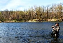 Great Fly-fishing Situation of Shad - Picture shared by Jack Denny – Fly dreamers