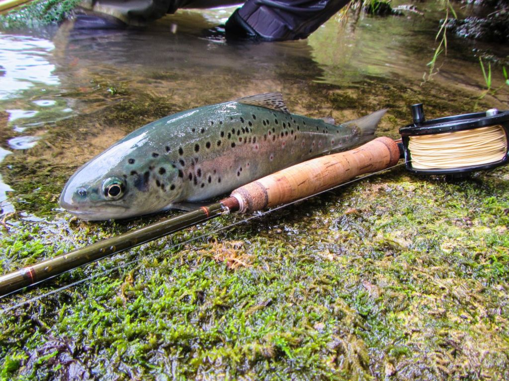 Sloflyfishing fly fishing guide fly tying instructor for Fly fishing flies chart