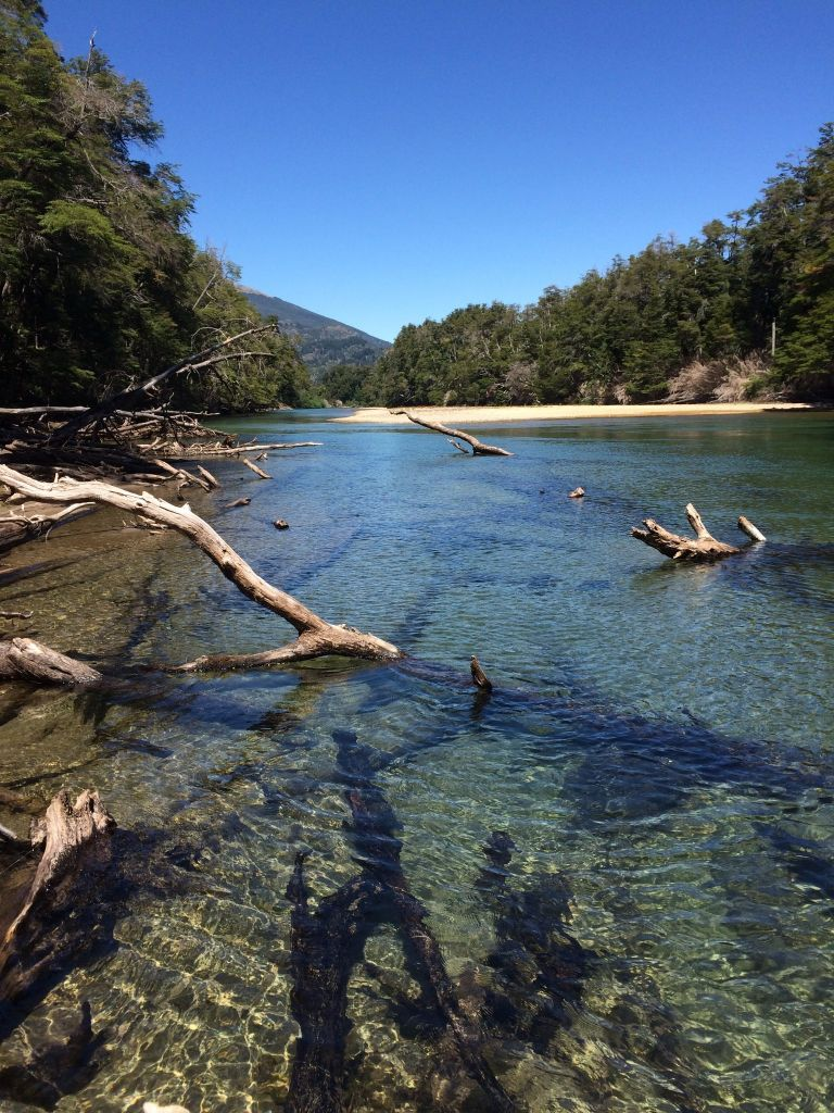 Argentina waters fly fishing outfitter fly dreamers for Patagonia fly fishing