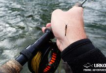 Uros Kristan 's Fly-fishing Entomology Image – Fly dreamers