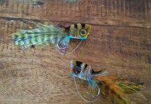Fly-tying for achigan à grande bouche - Picture shared by Vincent Vescovi – Fly dreamers