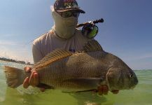 Fly-fishing Pic of Black Drum shared by Capt. Cody Miller – Fly dreamers