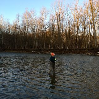Fighting an Ohio steelhead