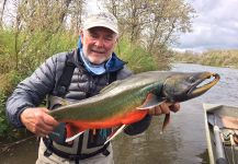 Bristol Bay Lodge Lodge 's Fly-fishing Image of a Dolly Varden | Fly dreamers