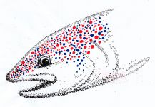 Carlo Iotti's Nice Fly-fishing Art Image | Fly dreamers