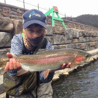 Central Pa Rainbow Trout