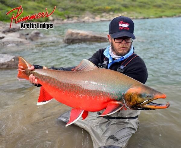 Plummer 39 s arctic lodges fly fishing lodge fly dreamers for Manitoba fishing lodges
