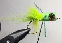Fly for Smallmouth Bass - Picture shared by Laurin Parker | Fly dreamers
